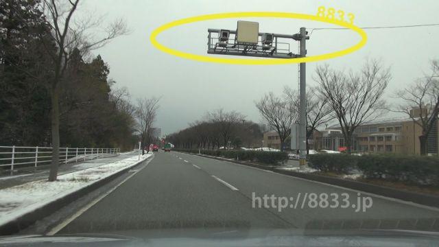 石川県 県道22号線(加賀産業開発道路) オービス