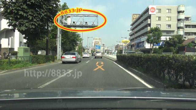 東京都 都道8号線(目白通り) オービス