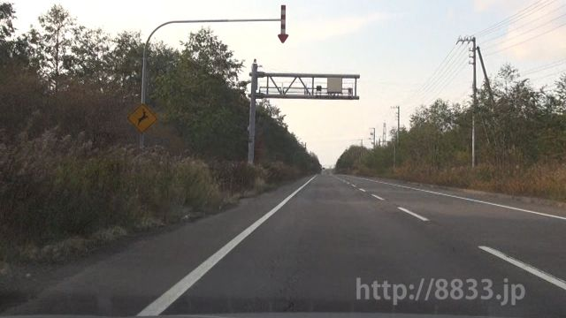 北海道 国道235号線(浦河国道) オービス