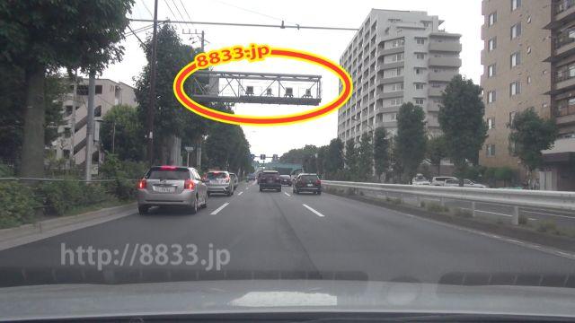 東京都 都道311号線(環八通り) オービス