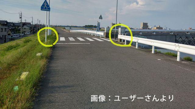 愛知県 堤防道路 オービス