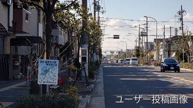 大阪府 府道19号線 オービス