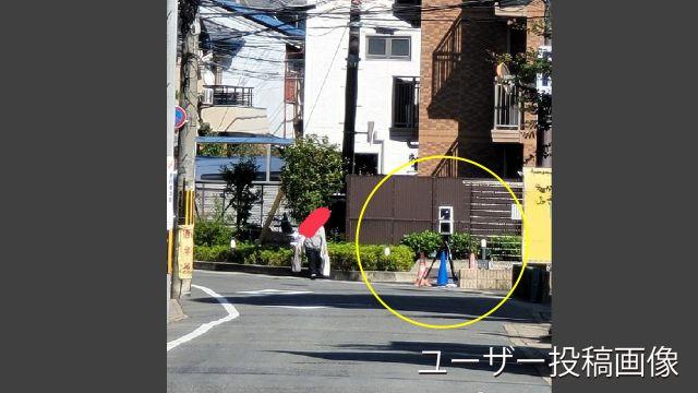 京都府 市道 オービス