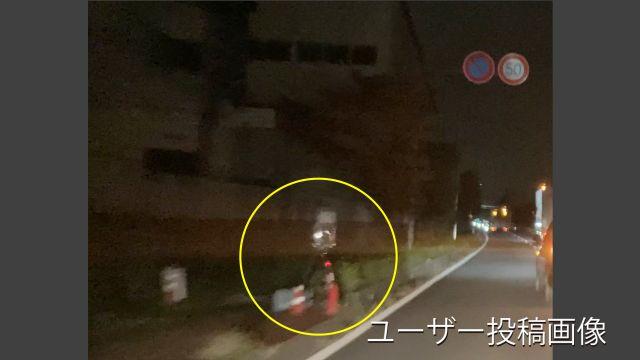 埼玉県 県道84号線(羽生栗橋線) オービス